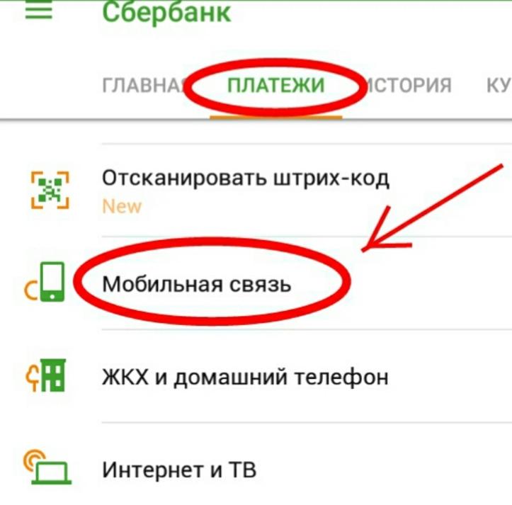 Оплата сотовой связи оператора Мегафон при помощи пластиковой карты от Сбербанка 6